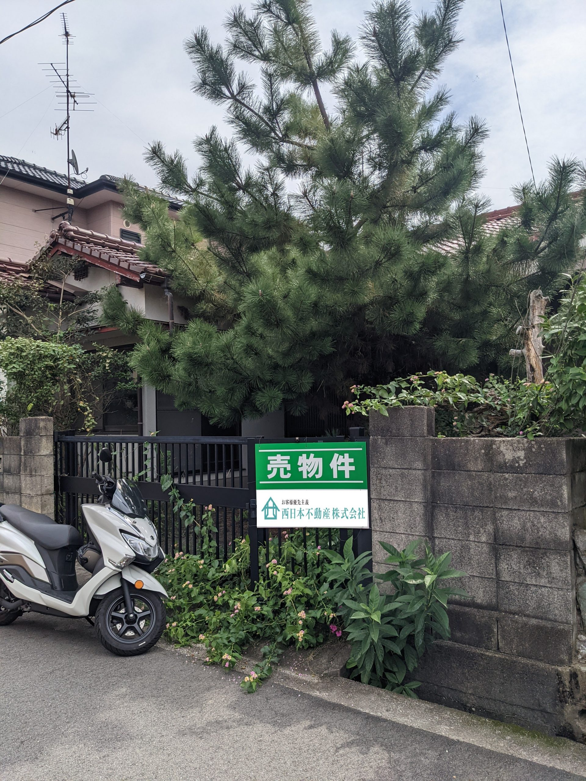 静かな立地で住まい考えてみませんか?|松山市土手内|売り土地